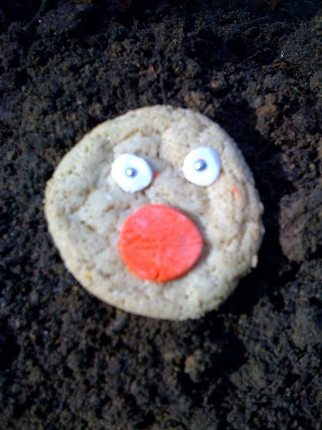 red nose cookie