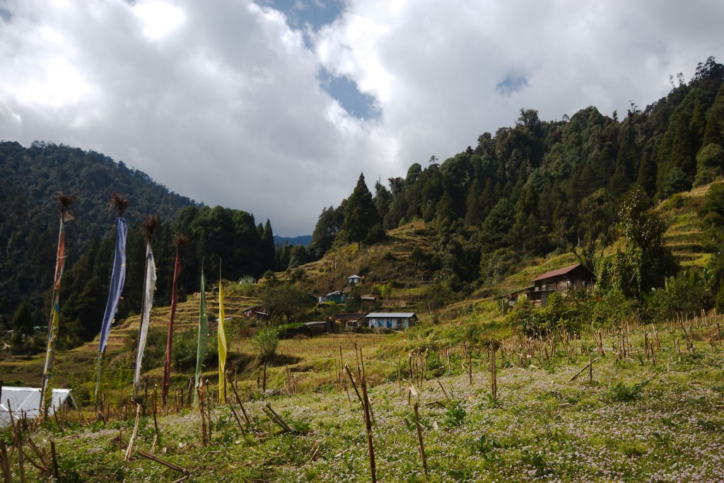 Gorkhy